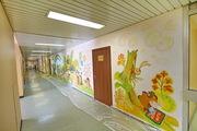 Художественная  роспись  стен, потолков любых  помещенний    - foto 0