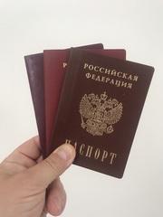 Помощь в получении статусов РВП,  ВНЖ и Гражданства в России